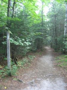 The start of the Katahdin Stream trail